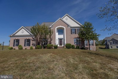 42144 Heaters Island Court, Leesburg, VA 20176 - #: VALO395122