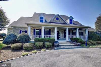 15575 Daley Farm Lane, Purcellville, VA 20132 - #: VALO396116