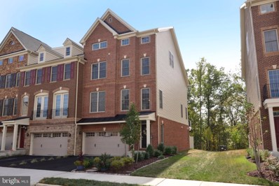 25017 Cambridge Hill Terrace, Chantilly, VA 20152 - #: VALO396462