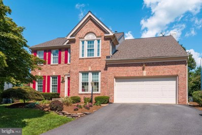 20650 Settlers Point Place, Sterling, VA 20165 - #: VALO396562