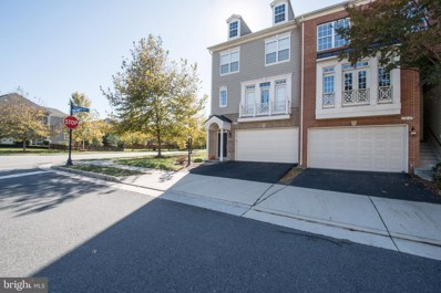 19121 Eagle Mine Terrace, Leesburg, VA 20176 - #: VALO396706