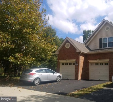 19956 Presidents Cup Terrace, Ashburn, VA 20147 - #: VALO397248