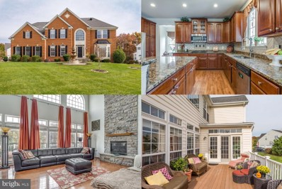 25448 Lemon Tree Place, Chantilly, VA 20152 - #: VALO397810
