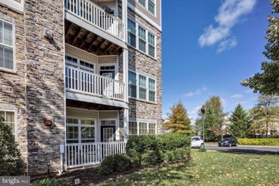 501 Sunset View Terrace SE UNIT 101, Leesburg, VA 20175 - #: VALO398204