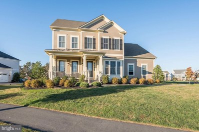 23711 Heather Mews Drive, Ashburn, VA 20148 - #: VALO398338