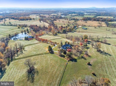 20561 Trappe Road, Upperville, VA 20184 - #: VALO398486