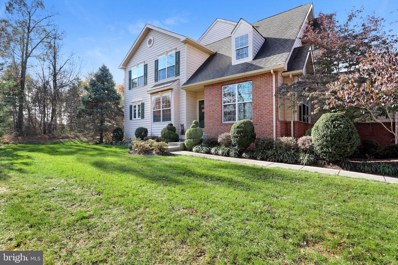 43265 Somerset Hills Terrace, Ashburn, VA 20147 - #: VALO398606