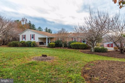 16793 Hillsboro Road, Purcellville, VA 20132 - #: VALO399228