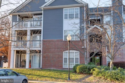 20330 Beechwood Terrace UNIT 102, Ashburn, VA 20147 - #: VALO399710