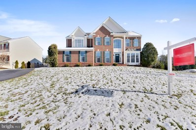 22146 Winter Lake Court, Ashburn, VA 20148 - #: VALO400552