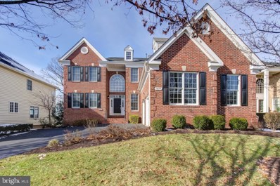 19845 Bethpage Court, Ashburn, VA 20147 - #: VALO401128