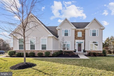 24170 High Falls Court, Ashburn, VA 20148 - #: VALO401202