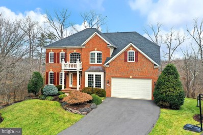 21016 Glendower Court, Ashburn, VA 20147 - #: VALO401348