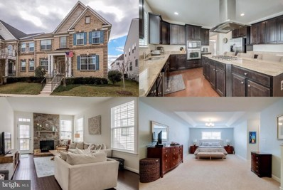 41715 Deer Grass Terrace, Aldie, VA 20105 - #: VALO402150
