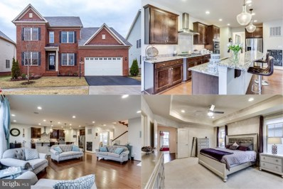 23570 Prosperity Ridge Place, Brambleton, VA 20148 - #: VALO403444
