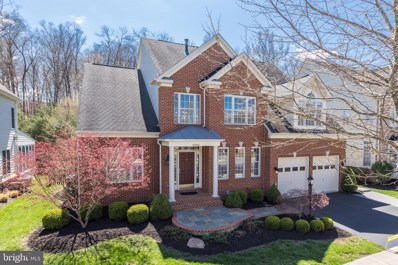 43965 Riverpoint Drive, Leesburg, VA 20176 - #: VALO405630