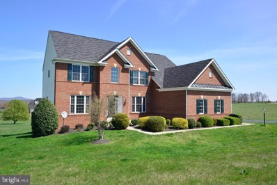 14042 Blue View Court, Leesburg, VA 20176 - #: VALO406182