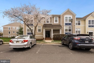 20605 Cornstalk Terrace UNIT 101, Ashburn, VA 20147 - #: VALO406836