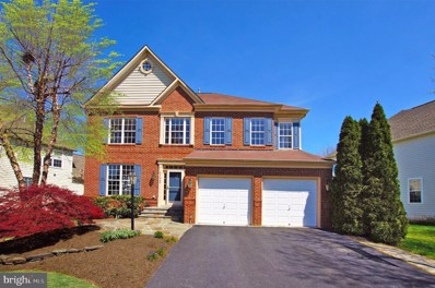 21340 Small Branch Place, Broadlands, VA 20148 - #: VALO408020