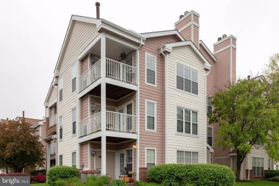 21033 Timber Ridge Terrace UNIT 302, Ashburn, VA 20147 - MLS#: VALO409168