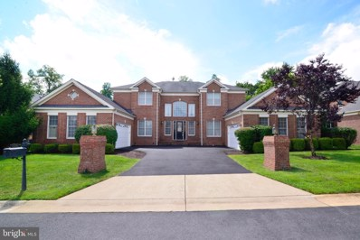 20137 Black Diamond Place, Ashburn, VA 20147 - #: VALO410308