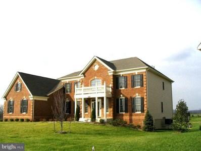 14173 Natalma Court, Leesburg, VA 20176 - #: VALO412744