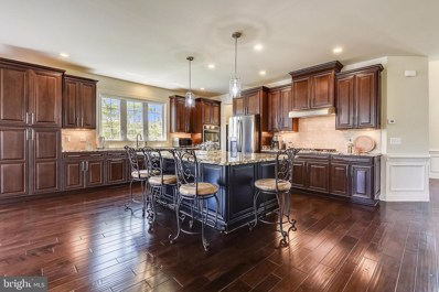 22602 Pinkhorn Way, Ashburn, VA 20148 - #: VALO414296