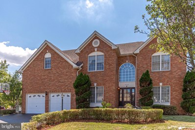 42718 Otis Lane, Chantilly, VA 20152 - #: VALO415684