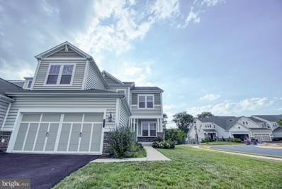 23621 Biggers Farm Terrace, Ashburn, VA 20148 - #: VALO415712