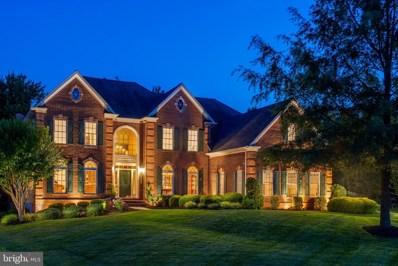 43013 Lago Stella Place, Ashburn, VA 20148 - #: VALO415858