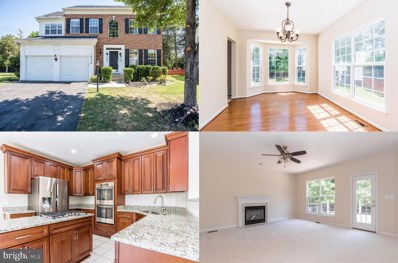 18250 Maple Spring Court, Leesburg, VA 20176 - #: VALO416182
