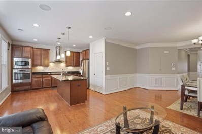 41935 Logan Stone Terrace, Aldie, VA 20105 - MLS#: VALO416848