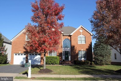 20320 Ocean Forest Court, Ashburn, VA 20147 - #: VALO417722