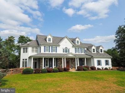 40918 Pacer Lane, Paeonian Springs, VA 20129 - #: VALO419520