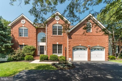 19920 Hazeltine Place, Ashburn, VA 20147 - #: VALO419602