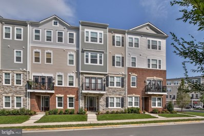 24492 Amherst Forest Terrace, Aldie, VA 20105 - #: VALO419732