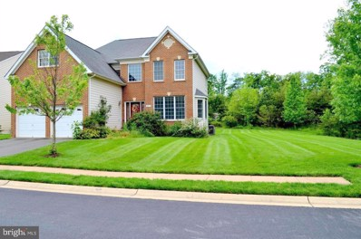 20057 Blackwolf Run Place, Ashburn, VA 20147 - #: VALO420636
