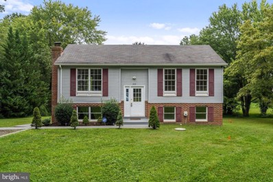 252 Maryland Avenue, Hamilton, VA 20158 - #: VALO421318