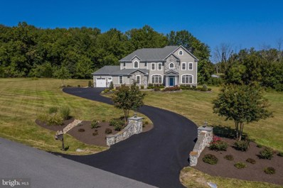 24042 Whitten Farm Court, Aldie, VA 20105 - #: VALO422254