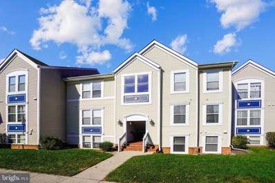 20603 Cornstalk Terrace UNIT 202, Ashburn, VA 20147 - #: VALO422714
