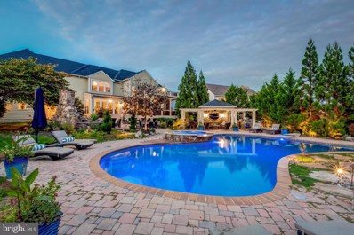 43817 Churchill Glen Drive, Chantilly, VA 20152 - #: VALO424502