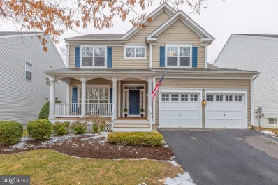26089 Rachel Hill Drive, Chantilly, VA 20152 - #: VALO430536
