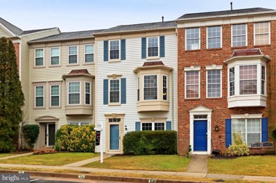 43263 Chokeberry Square, Ashburn, VA 20147 - #: VALO430722