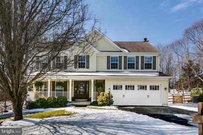 42821 Crowfoot Court, Ashburn, VA 20147 - #: VALO430744
