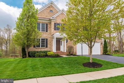 42317 Rising Moon Place, Brambleton, VA 20148 - #: VALO435832