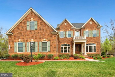 42297 Madturkey Run Place, Chantilly, VA 20152 - #: VALO436016