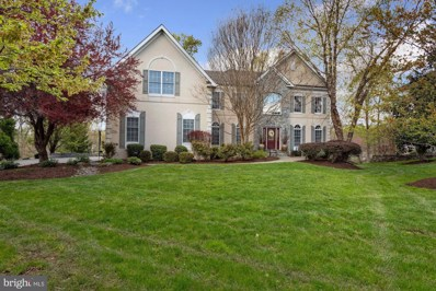 19582 Saratoga Springs Place, Ashburn, VA 20147 - #: VALO436698