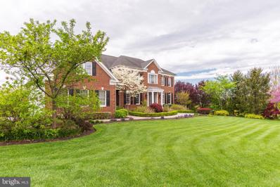 43135 Meadow Grove Drive, Ashburn, VA 20147 - #: VALO438410