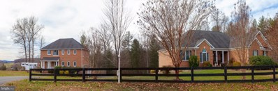 109 Arrington Mountain Road, Haywood, VA 22722 - #: VAMA100022