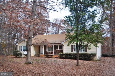 15 Sadie Lane, Madison, VA 22727 - #: VAMA100046